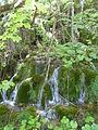 Plitvice lakes (50).JPG