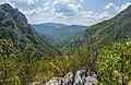 Pogled na Vlaške planine.jpg