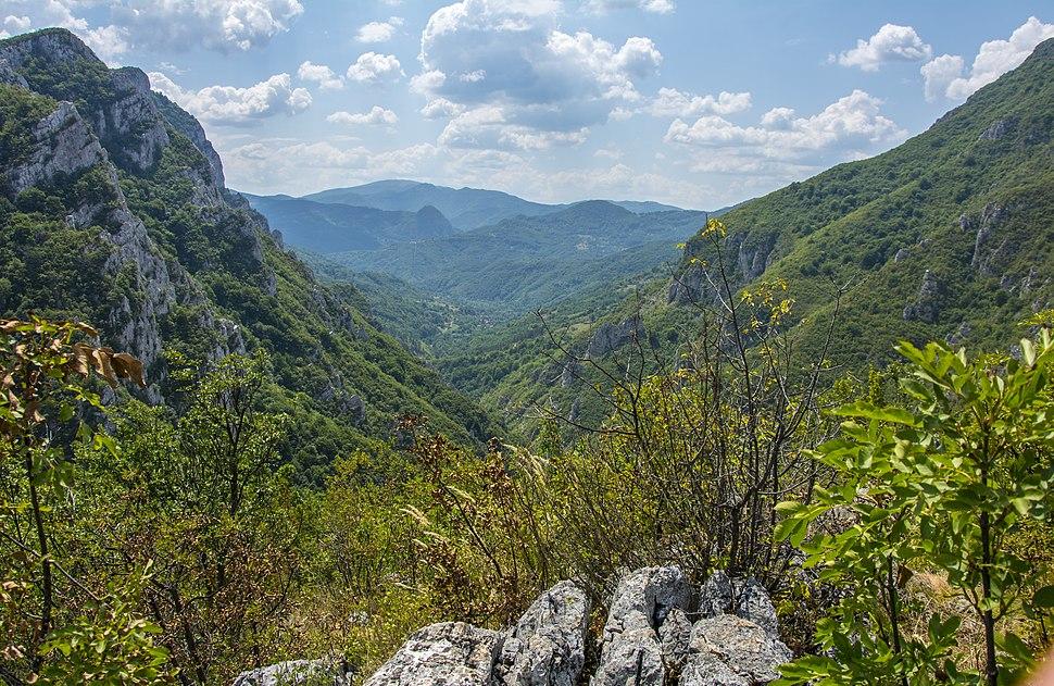 Pogled na Vlaške planine