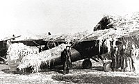 Polish fighter P-11 camouflaged in battle airfield 31.08.1939