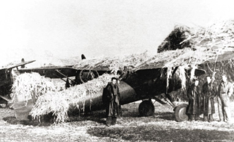 Polish P-11 camouflaged in airfield 1939