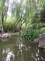 Pond - CG.jpg