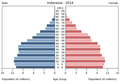 Population pyramid of Indonesia 2014.png
