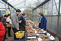 Potato Weekend at Dundry nurseries - geograph.org.uk - 1135111.jpg