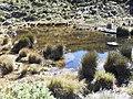 Prateleiras Lake^ - panoramio (6).jpg
