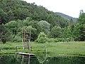 Pri jazierku - panoramio (4).jpg