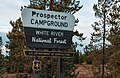 Prospector Campground - White River National Forest, Colorado (31514794177).jpg