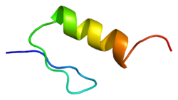 Protein ZFY PDB 1klr.png