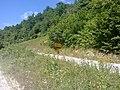 Put za Crljene - panoramio.jpg