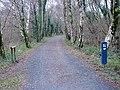 RSPB site at Arthog Bog - geograph.org.uk - 1103569.jpg