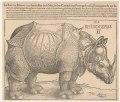 Rhinoceros - AD (monogram). LCCN2002712730.tif