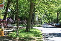 Rhododendronpark Bremen 20090513 276.JPG