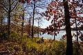 Richard B. Russell State Park.jpg