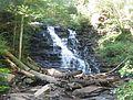 Ricketts Glen State Park F.L. Ricketts Falls 1.jpg
