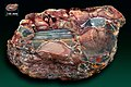 Riolitowy gruz agatowo-jaspisowy zwany Butterfly Wing Agate (czyli agatowe skrzydło motyla) – Mazatlan, Meksyk.jpg