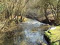 River Alyn at Loggerheads, Denbighshire - DSC05497.JPG