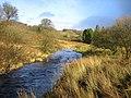 River Barle - geograph.org.uk - 450599.jpg