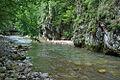 River Mali Rzav and Visocka Banja Spa in Serbia - 4283.NEF 27.jpg