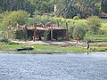 River Nile 12.jpg