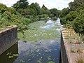River Soar downstream of Soar Lane bridge - geograph.org.uk - 953994.jpg