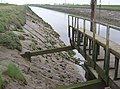 River Welland at Low Tide - geograph.org.uk - 432318.jpg
