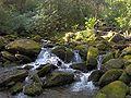 Rock-creek-gsmnp1.jpg