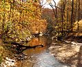 Rock Creek - Flickr - treegrow (9).jpg