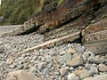 Rocks and pebbles, Clovelly - geograph.org.uk - 985132.jpg