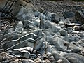 Rocks on beach, Glen Maye - geograph.org.uk - 773599.jpg