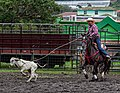 Rodeo Event Calf Roping 42.jpg