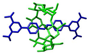 Cyclodextrin - Image: Rotaxane Crystal Structure Chem Comm page 493 2001 commons
