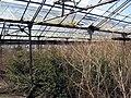 Rozbořené skleníky u Rokytky (3).jpg