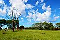 Ruínas de São Miguel das Missões - Rio Grande do Sul - Brasil.jpg
