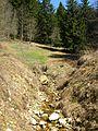Ruisseau de Bellecombe (Autrans).jpg