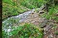 Ruisseau des Palanges (4).jpg