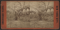 Rustic rest, Central Park, from Robert N. Dennis collection of stereoscopic views 2.png