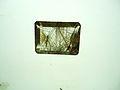 Rutile needles in quartz.jpg
