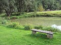 Rybníček Lasvice.jpg