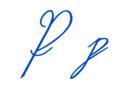 Sütterlin Buchstabe P Font Wiegel Kurrent CC.png