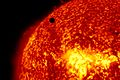 SDO's Ultra-high Definition View of 2012 Venus Transit (304 Angstrom Close Up).jpg