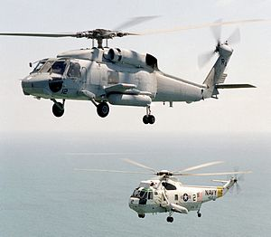 SH-60F HS-10 and SH-3H HS-2 inflight 1989.JPEG