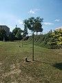 Saint Florian Park, Memorial tree line, 2019 Ajka.jpg