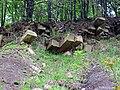 Sandstone & mudshale (Henley Member, Borden Formation, Lower Mississippian; Tener Mountain roadcut, southern Ohio, USA) 3 (48239062836).jpg