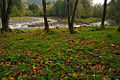 Sandy River (14619509733).jpg