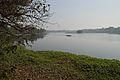 Santragachi Lake - Howrah 2013-01-25 3594.JPG