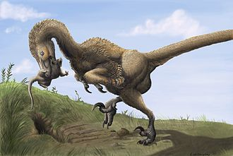 Wahweap Formation - A maniraptoran dinosaur digging a primitive mammal out of its burrow, as per the 2010 discovery by Simpson et al. of trace fossils indicating a predator–prey relationship in the Wahweap Formation.