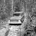 Scenes from bear hunt conducted by Bill Gibbs of Marion, NC near Black Mountain, NC Dec 1966 photo by Arrington. From Conservation and Development Department, Travel and Tourism photo files, State (28722057083).jpg