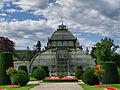 Schönbrunn Palace Plam Tree House.jpg