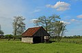 Schale Naturschutzgebiet Wehrstroot 09.JPG