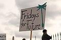 School strike for climate in Vienna, Austria - March 15 2019 - 37.jpg
